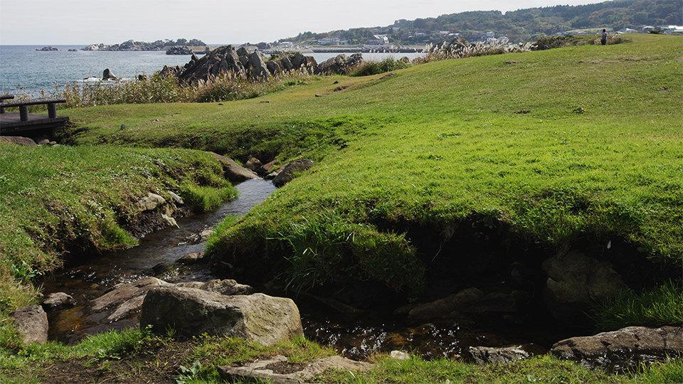 ชายฝั่งทาเนะซาชิ - Tanesashi Coast