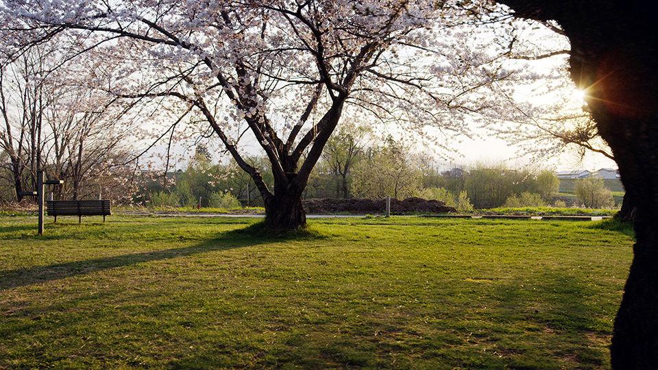 이와키가와 하천공원 - Iwakigawa Kasen Park