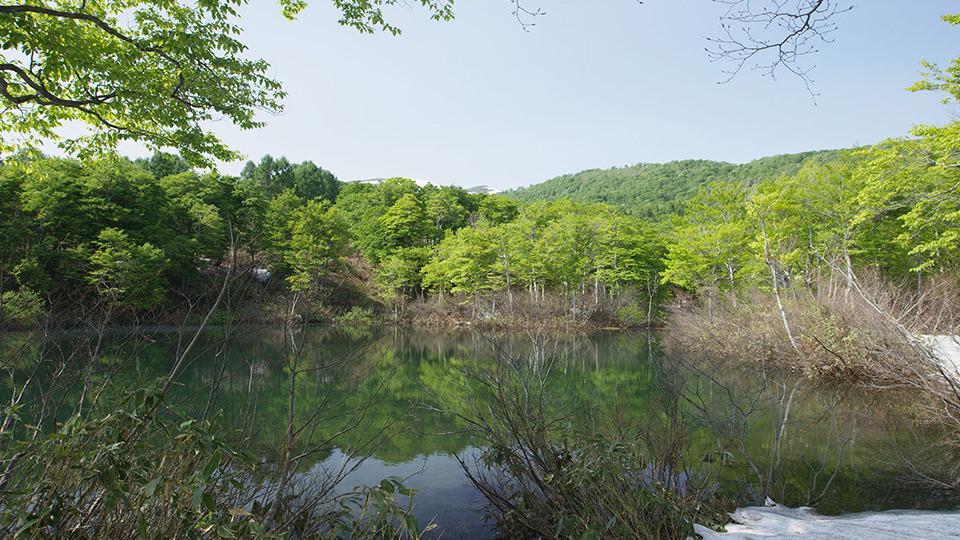 지조누마 늪 - Jizo-numa Pond
