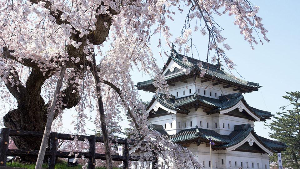 弘前城 - Hirosaki Castle