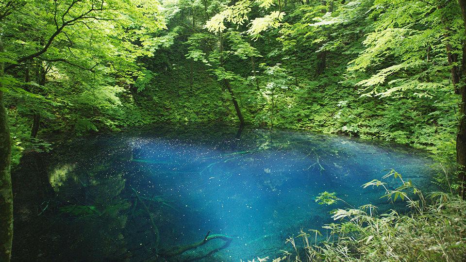青池 - Aoike Pond