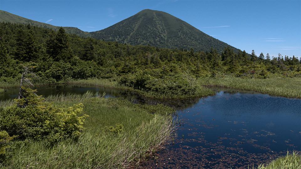 睡莲沼 - Suiren-numa Pond