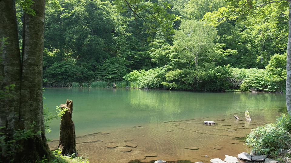 獨鈷沼 - Dokko-numa Pond