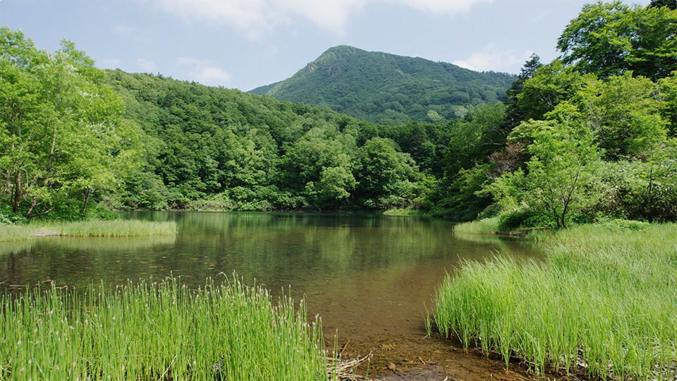 片贝沼 - Katakai-numa Lake