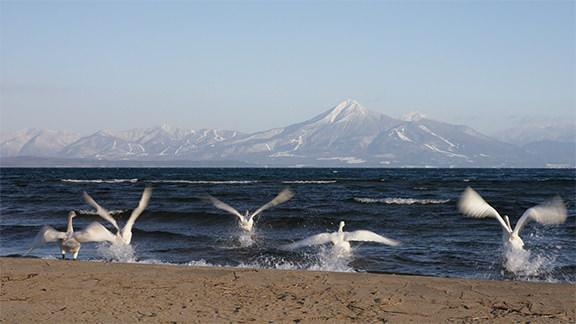 猪苗代湖 - Lake Inawashiro